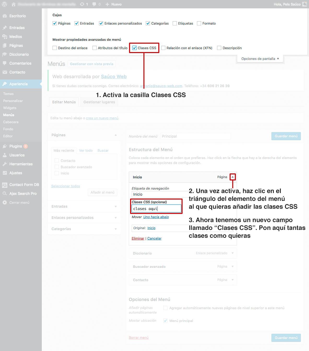 Asignar CSS a elementos del menú de WordPress desde el backend
